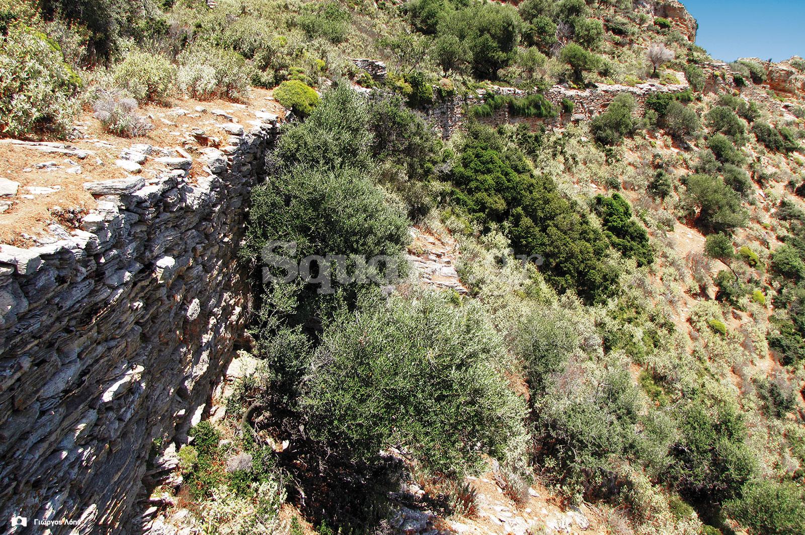 16-Άποψη-του-ίχνους-των-σωζόμενων-ανατολικών-αρχαίων-τειχών
