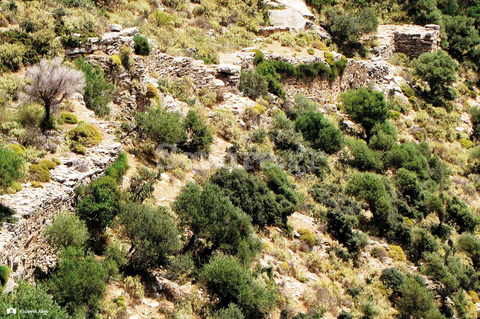 19-Τα-ανατολικά-τείχη-του-κάστρου-της-Φυλάγρας