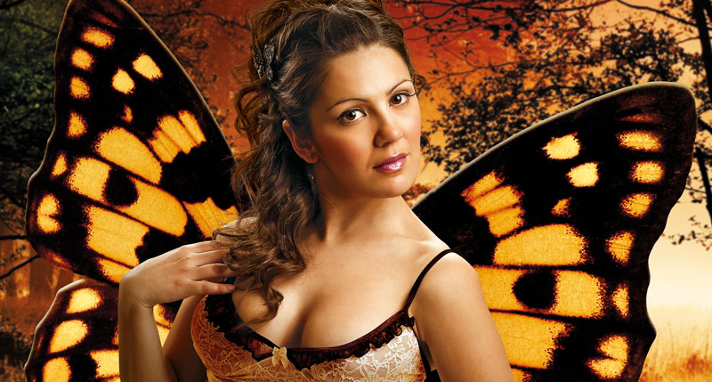 Sexy butterfly